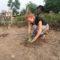 Environmental and Conservation Volunteer Program